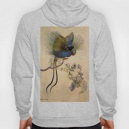 """The Beautiful Bird of Paradise"" Art by Warwick Goble Hoody"