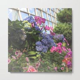 Hyacinth Bush at Flower Dome Gardens by the Bay Marina Bay Singapore Photography Art Print Metal Print