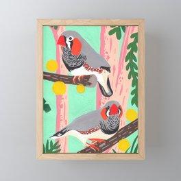 Zebra finches on nature Framed Mini Art Print