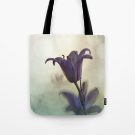 Bluebell in early evening light Tote Bag