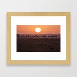 Sunset in the palm trees Framed Art Print
