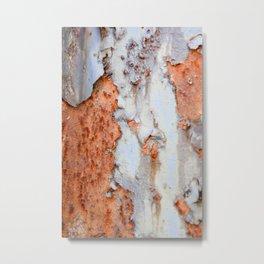 Texture4 Metal Print