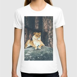 Lion on the rock T-shirt