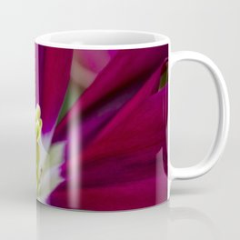 Closeup of a Wide Open Magenta Tulip with Stigma in the Center in Amsterdam, Netherlands Coffee Mug