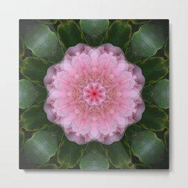 Pink Carnation Mandala Abstract Metal Print