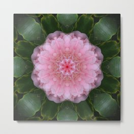 Pink Carnation Mandala Abstract Metal Print
