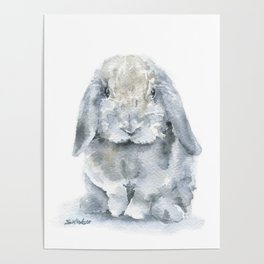 Mini Lop Gray Rabbit Watercolor Painting Poster