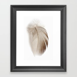 Mallard Feather Framed Art Print