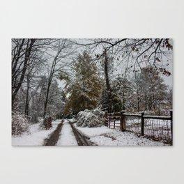 Winter Corner Canvas Print