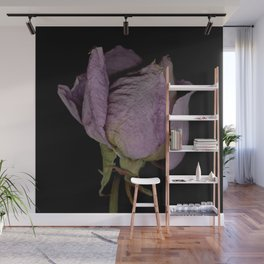 Alpha - Dried Rose Scanography Portrait Wall Mural