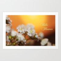 bibi flower Art Print