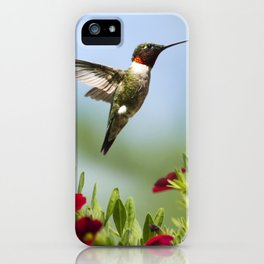 Hummingbird Frolic iPhone Case