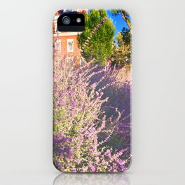 Lavender at Radcliffe iPhone Case