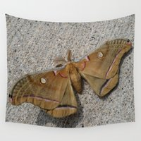 moth Wall Tapestries featuring Moth by Deb MacNeil