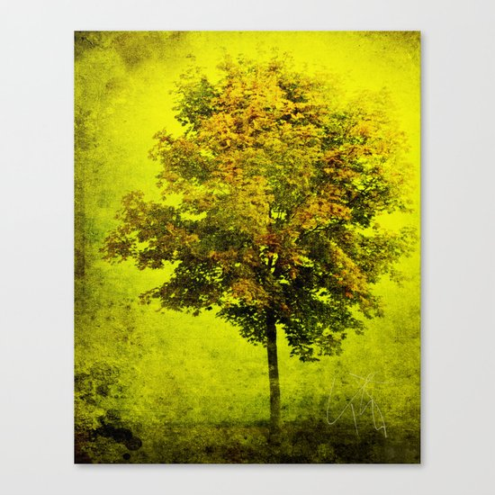 The Wishing Tree Canvas Print