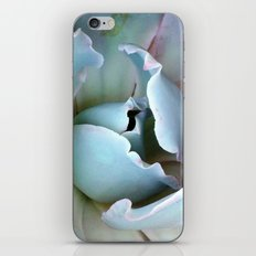 Folds - Succulent iPhone & iPod Skin