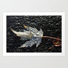golden maple leaf Art Print