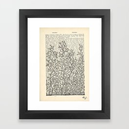 Feed Your Mind Framed Art Print