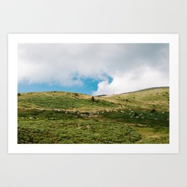 Le Troupeau des Chevaux/The Herd of Horses Art Print