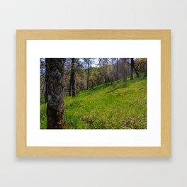 Morgan Hill Framed Art Print