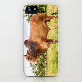 Thai cow bull iPhone Case