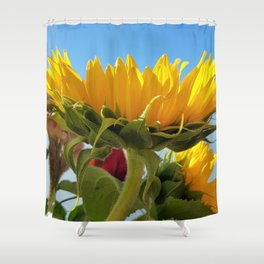 A Summer Bouquet 17 - sunflowers, roses and cockscomb Shower Curtain