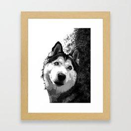 Trickster puppy Framed Art Print