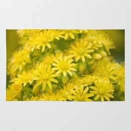 Dreamy Spiral Yellow Flowers Rug