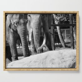 Two Elephants Serving Tray