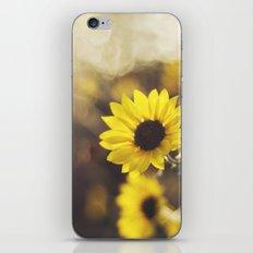 Magic Light iPhone & iPod Skin