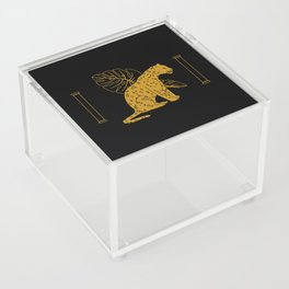 Mystic Series Special Edition Acrylic Box