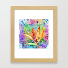 Bird of paradise i Framed Art Print