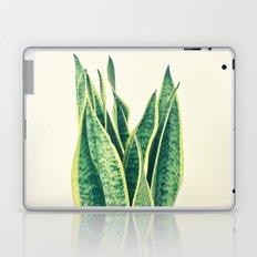 Snake Plant Laptop & iPad Skin