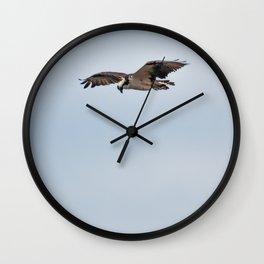Bird - Osprey Wall Clock