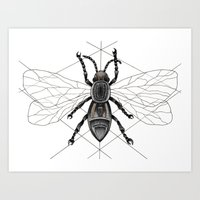 insect Art Prints featuring insect by silb_ck