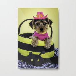Yorkshire Terrier Puppy Wearing a Hot Pink Shirt and Cowboy Hat Poses in a Bumble Bee Basket Metal Print