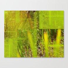 The Green Grass  Canvas Print