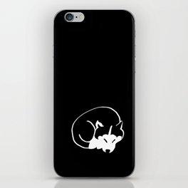 Siberian Husky 4 iPhone Skin
