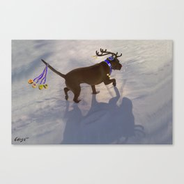 """DREIDEL, DREIDEL, DREIDEL ...Hanukkah PLaY-Do'LPH"" from the photo series, ""My dog, PLaY-DoH"" Canvas Print"