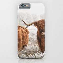 Hairy Scottish highlanders in a natural winter landscape. iPhone Case