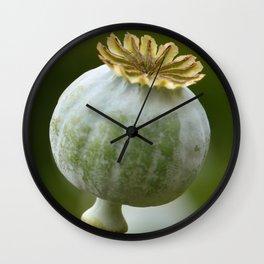 Poppy 280 Wall Clock