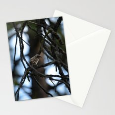 Sweet Sparrow Stationery Cards