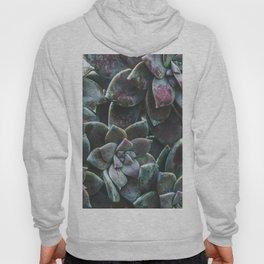 Botanical Gardens - Succulent #157 Hoody