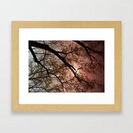 Bright Day Framed Art Print