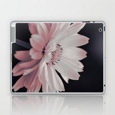 #38 Laptop & iPad Skin