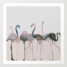 New Flamingos Art Print