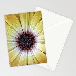 Dial-a-Daisy Stationery Cards