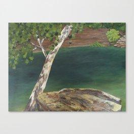 Macks Big Rock Canvas Print