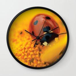 Ladybug, macro, still life, fine art, print, interior design, high quality photo, decor Wall Clock
