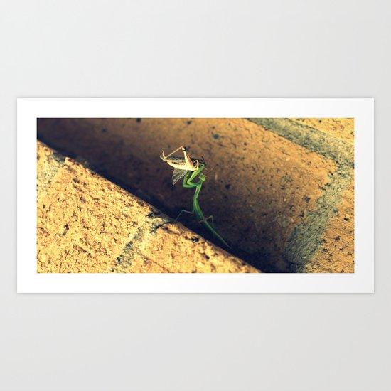 Sacrificial Grasshopper Art Print
